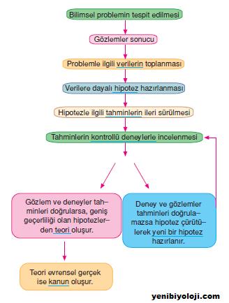 Felsefede temel bilimsel bilgi yöntemleri