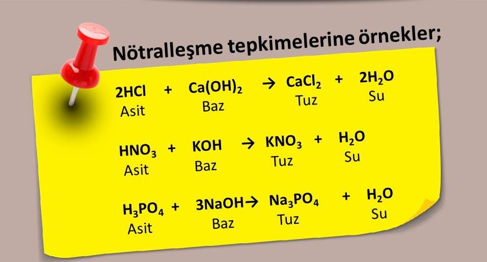 Hangi maddeler tadı yok Biyoloji, 8. Sınıf