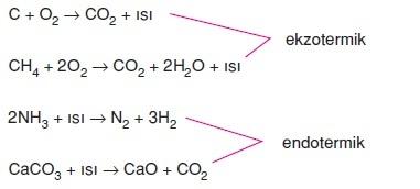 Anabolik ve katabolik reaksiyonlar where to buy anabolic steroids in malaysia