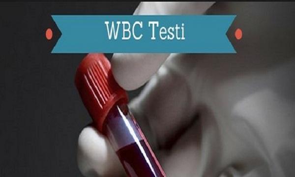 Artan beyaz kan hücresi sayısı